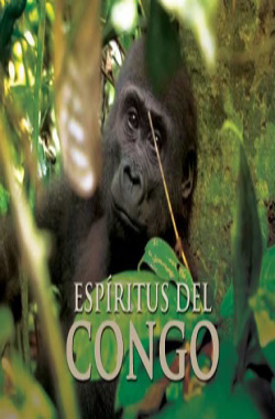 Spirits of the Congo