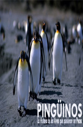 Penguins, the story of the birds that wanted to be fish